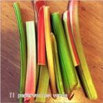 Rhubarb & Ginger Curd
