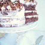 Torta nuda al cacao
